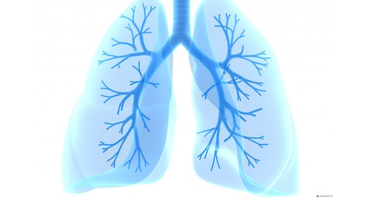 Заболявания белите дробове