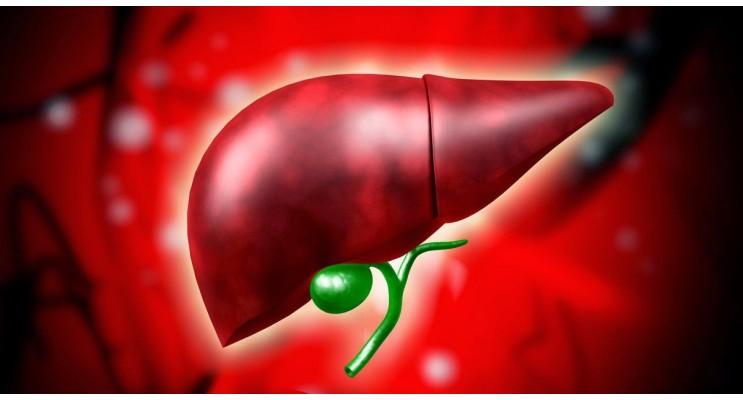 Здрав черен дроб